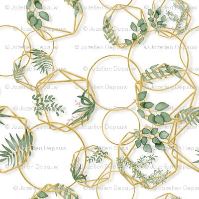 Golden chain botanicals