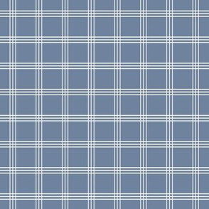 """Pretty Plaid 1"""": Chambray Blue 10 Small Plaid"""