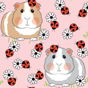 guinea-pigs-with ladybugs and flowers on pink