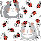 guinea-pigs-with ladybugs and flowers on white