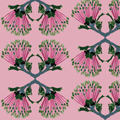 2941-Banksia_3-Matchstick-Pink