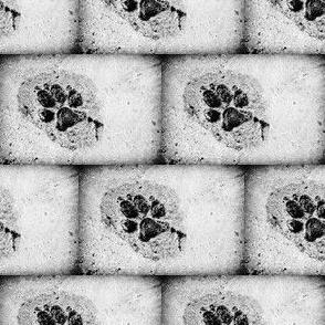 Wolf Print