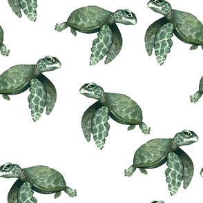 Quiet Sea Turtles - Larger Scale