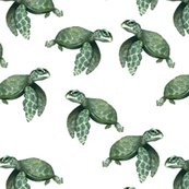 Rnew-sea-turtles_shop_thumb