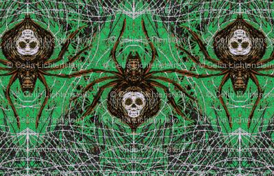 Spider Venom-Gr