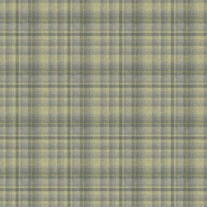 Plaid in Lemongrass and Gray