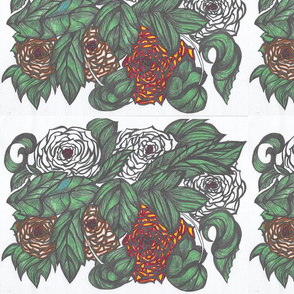 6A Europas Rose