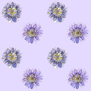 Passion Flower on Purple