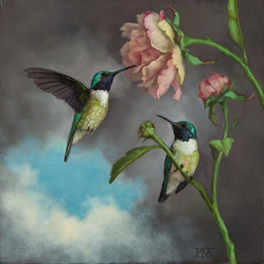 Black Chinned Hummingbirds