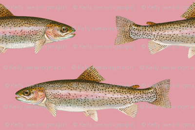 small rainbow trout on rosebud pink