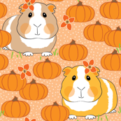 guinea-pigs-and-pumpkins in a pumpkin patch on peach