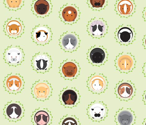 Roly-Poly Cavies fabric by aalk on Spoonflower - custom fabric