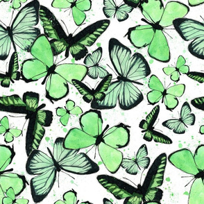 Green Watercolor Butterly