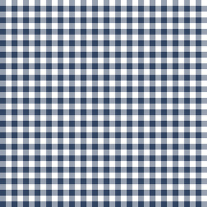 Navy Gingham Mini