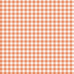 Orange Gingham Mini