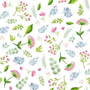 Baby Botanical