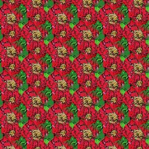 red peony