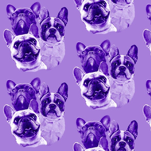 purple frenchy fabric