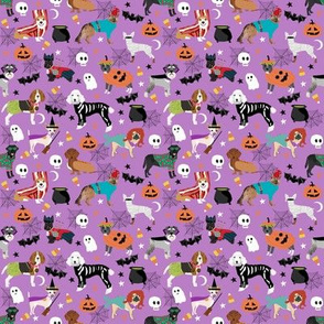 SMALL - Dogs Halloween fabric, dog, dogs, dog costumes, pet, pet breeds, corgi, doxie, labrador, poodle