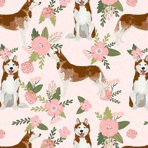 husky dog fabric - blush florals design - pet quilt d