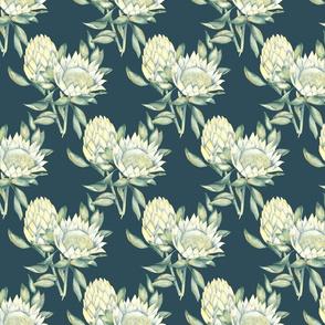 Protea-