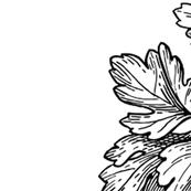 parsleyTeatowel