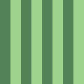 JP30 - Wide Two Tone Green Basic Stripes