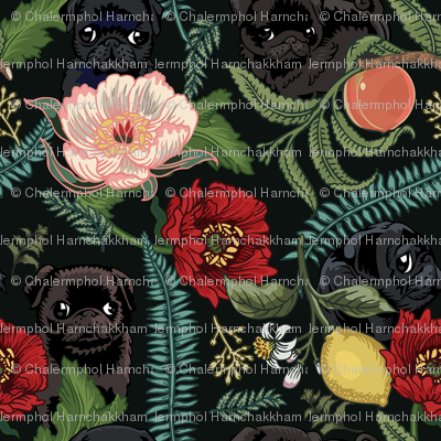 Botanical and Black Pugs