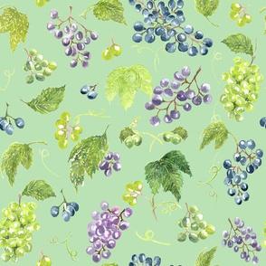 Anna's vineyard