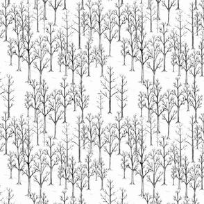 Winter Wonderland  Trees Black and White