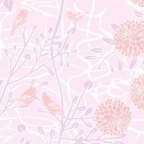 Dahlias in Pastel Pinks
