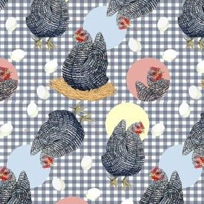 Gingham Plymouth Rock Hens
