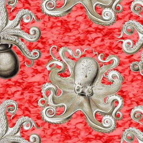 Haeckel's octopus tan+red ink