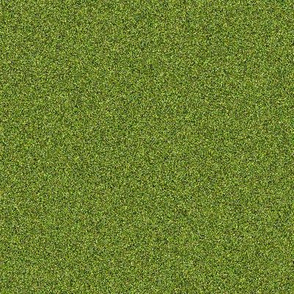 CD1 - Olive Green Texture