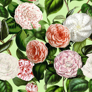 "18"" Camellia Pattern"