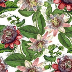 "12""  Passiflora Vintage Pattern- Large Designed by UtART at https://www.facebook.com/UtArt.Home Available for custom pattern projects. Contact me at utart_home@gmx.net"