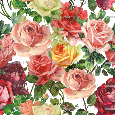 Colorful Vintage Roses - Large 18in