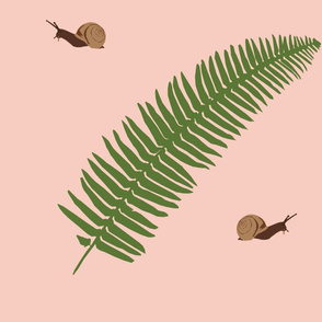 peach fern _ snails-01