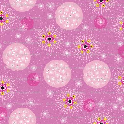 Poof!* (Pink Liza) || dandelion dandelions flower flowers floral garden summer circles organic stars star starburst