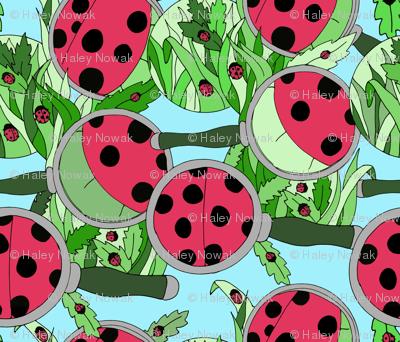 Ladybugs 'Round the Yard