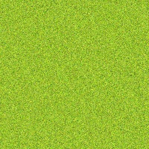 CD16 - Speckled  Lime  - in - My - Olive  Texture