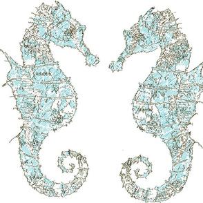 seahorse blue large