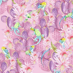 desert in bloom Melanio_pink