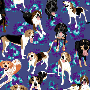 coonhound-blue-floral