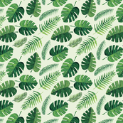 Green monstera and palm leaves