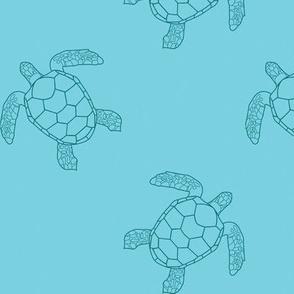 Light Blue Turtles