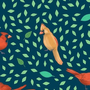 Large Scale Cardinals on Turquoise