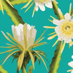 dragonfruitflower-01