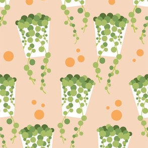 String of Pearls pot on peach