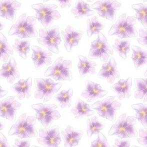 sweet summer dreams_purple
